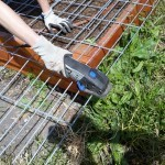 Cheap and easy: Hog panel trellises
